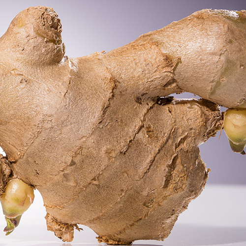Ginger yellow ginger peel pungent hot