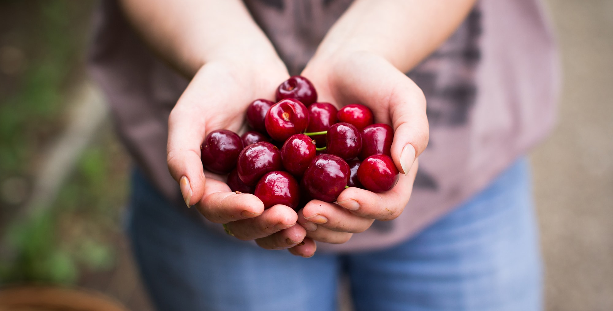 cherry2-min