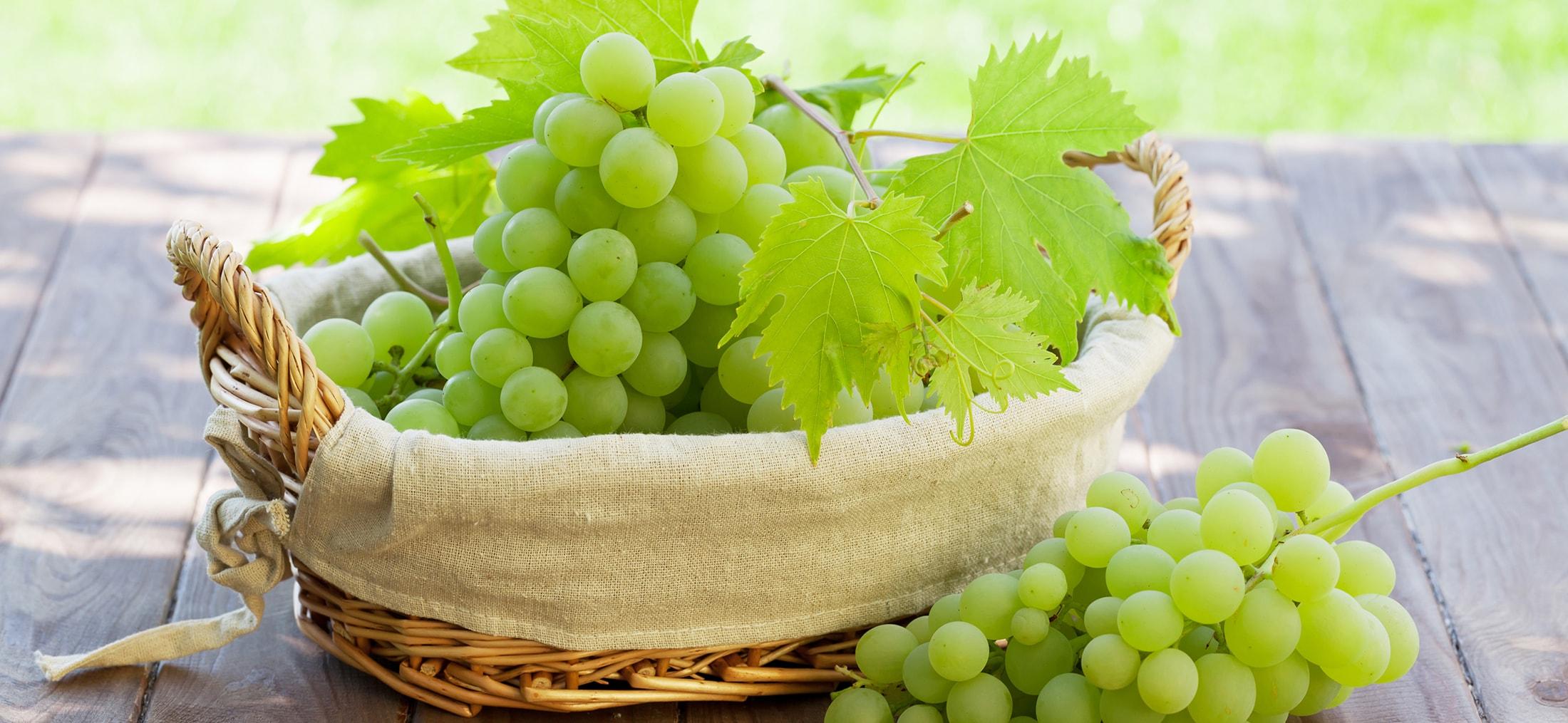 grapes-min-1