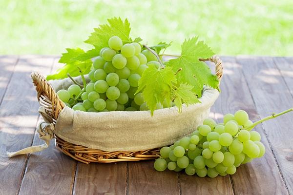 grapes-min 2