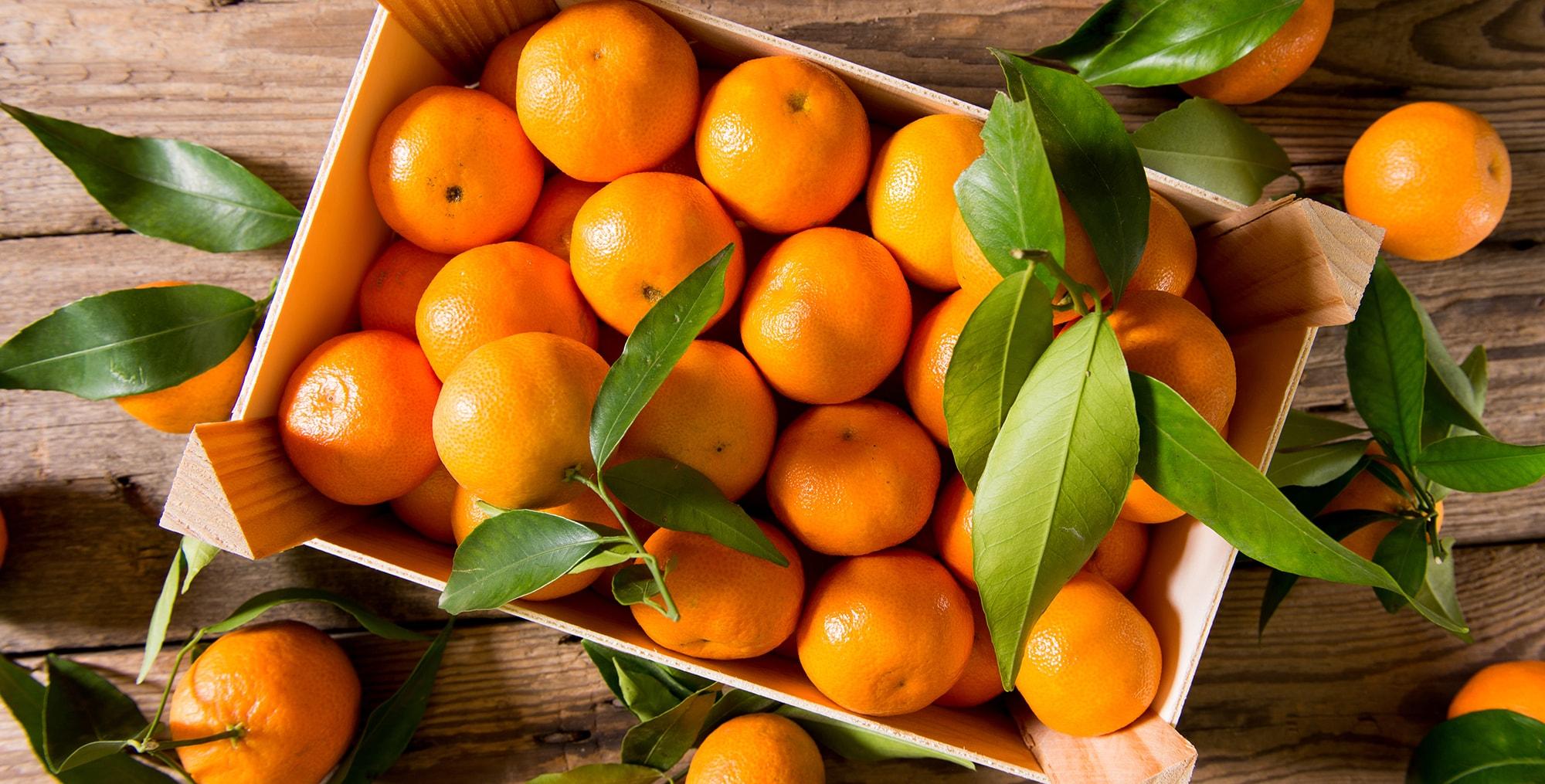mandarins2-min