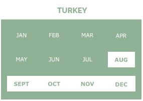 turkey-g1