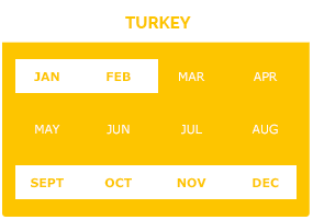 turkey-l