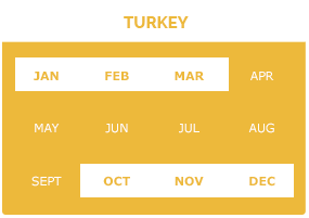 turkey-o1