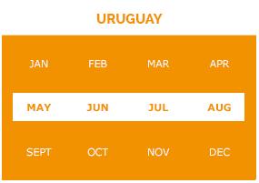 uruguay-m1